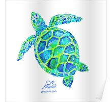 Sea Turtle green & blue by Jan Marvin Poster