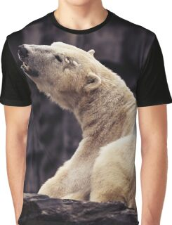 ice bear Graphic T-Shirt