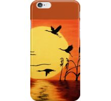 Sunset Geese iPhone Case/Skin