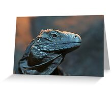 Blue Iguana Greeting Card