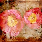 Antique Peonies by Fara