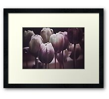 Tulips in The Dark  Framed Print