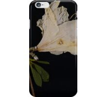 Old Lace iPhone Case/Skin