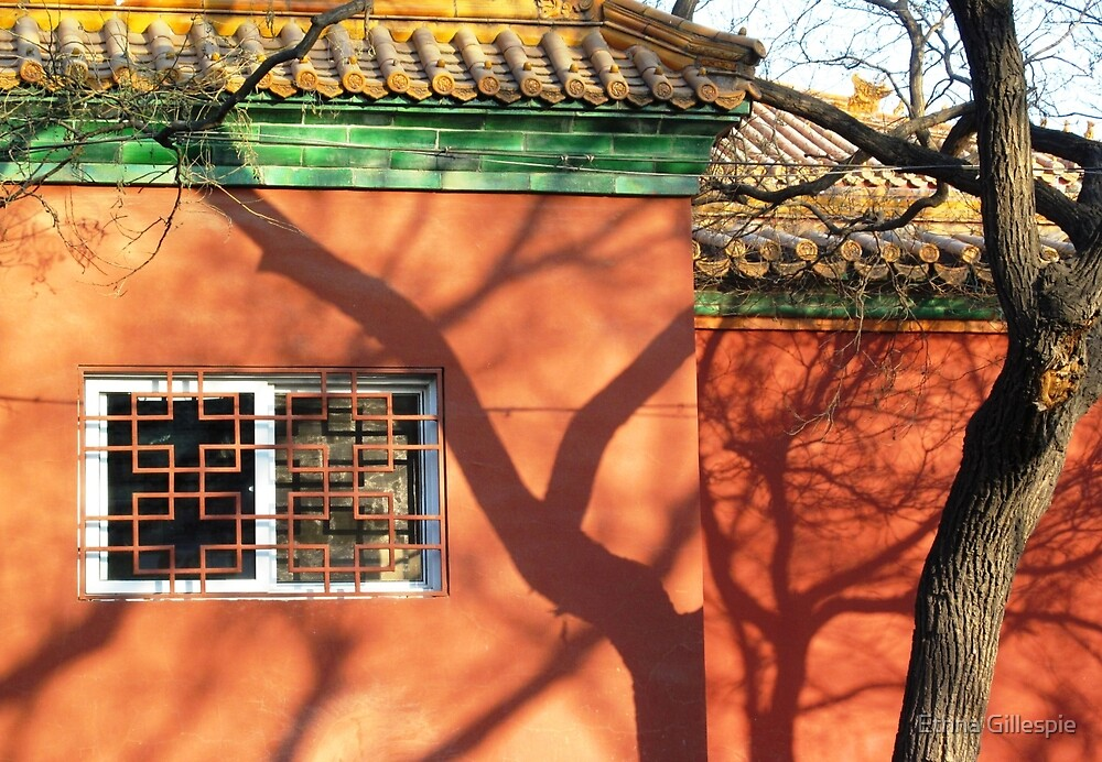 Window and Shadows  by Ethna Gillespie