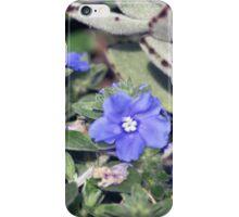 Longwood Gardens - Spring Series 150 iPhone Case/Skin