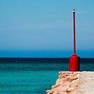 THE SEA  by karmadesigner
