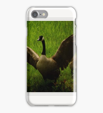 Charging Goose on  a Minnesota Lake iPhone Case/Skin
