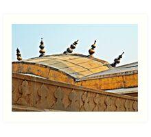Agra Fort Roof  Art Print