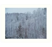 A snowy spring scene. Art Print