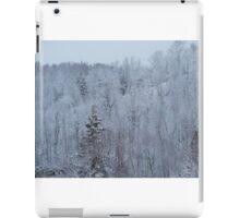 A snowy spring scene. iPad Case/Skin