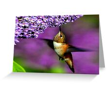 BEST NATURE IMAGE.. Greeting Card