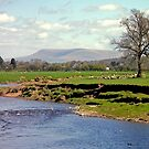 Ribble & Pendle by mikebov