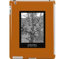 Sedona Bell Rock Vortex b&w iPad Case/Skin