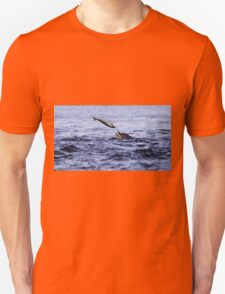 Bottle Nose dolphin eating a large salmon  Unisex T-Shirt