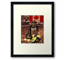 Views - The Raptors  Framed Print
