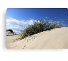 SAND DUNE IN THE WIND  Canvas Print