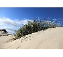 SAND DUNE IN THE WIND  Photographic Print