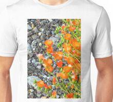 Globemallow Gravel Macro Unisex T-Shirt