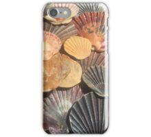 Scallop Shells Bruny Island iPhone Case/Skin