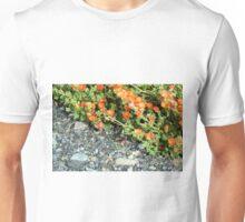 Globemallow and Gravel Orange and Gray Unisex T-Shirt