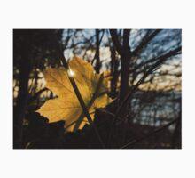 Spotlight on Autumn Kids Tee