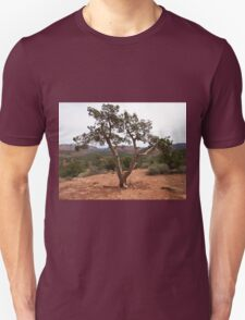 Old Earth, New View of the Desert T-Shirt