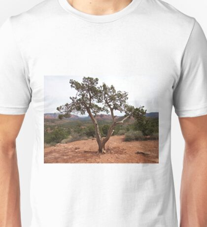 Old Earth, New View of the Desert Unisex T-Shirt