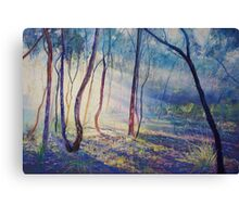 Ironbark Country Morning Canvas Print