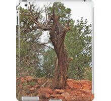 Juniper Twister iPad Case/Skin