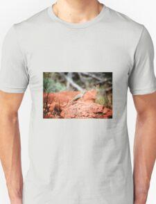 Desert Reptile Unisex T-Shirt