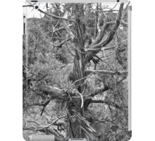 Black and White Juniper iPad Case/Skin