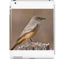 Say's Phoebe on a Fence Post iPad Case/Skin