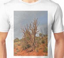 Gnarly Desert Juniper in Sunny Arizona Unisex T-Shirt