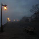 Evening Stroll by RVogler