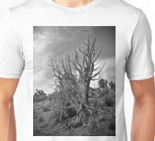 Juniper and Sky Black and White Unisex T-Shirt