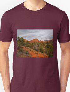 Red Rocks, Gray Sky T-Shirt