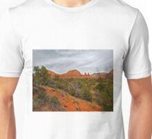 Red Rocks, Gray Sky Unisex T-Shirt