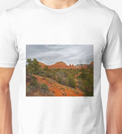 Red Rocks, Gray Sky Unisex T-Shirt
