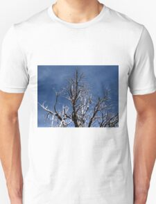 Grand Canyon 27 T-Shirt