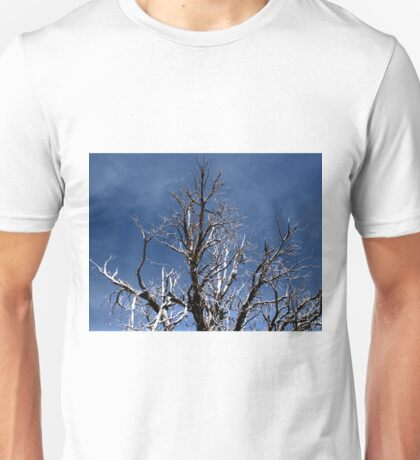 Grand Canyon 27 Unisex T-Shirt