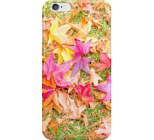 Lovely Leaves... iPhone Case/Skin