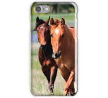 Horses & Bluebonnets II iPhone Case/Skin