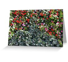 Natural background with small red flowers among green leaves. Greeting Card