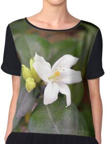 Small white flower and green leaves. Chiffon Top