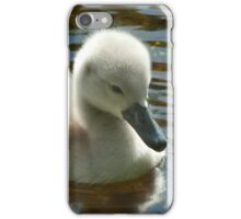 Little explorer iPhone Case/Skin