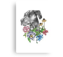 A Dog's Blessing Canvas Print