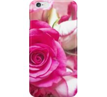 Roses Collection - number 2 iPhone Case/Skin