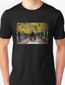 Fiacre In Chestnut Alley T-Shirt