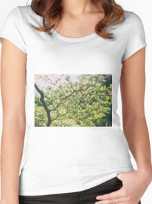 Illuminated Tree Women's Fitted Scoop T-Shirt