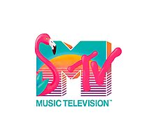 MTV Flamingo Photographic Print
